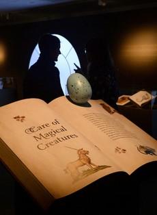 Izložba povodom 20 godina od prve knjige o Hariju Poteru