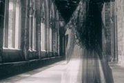 Tribina ''Horor i fantastika u savremenoj književnoj produkciji''