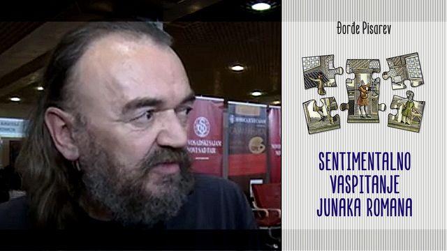 Đorđe Pisarev - Sentimentalno vaspitanje junaka romana